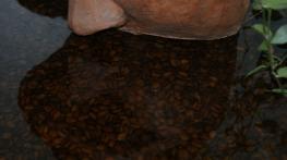 detalle encimera bao resina y granos de caf